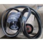 Ремень генератора + ролики (комплект) Nissan X-Trail T31 M9R/110 - дизель (Ниссан Икс-Трейл T31)